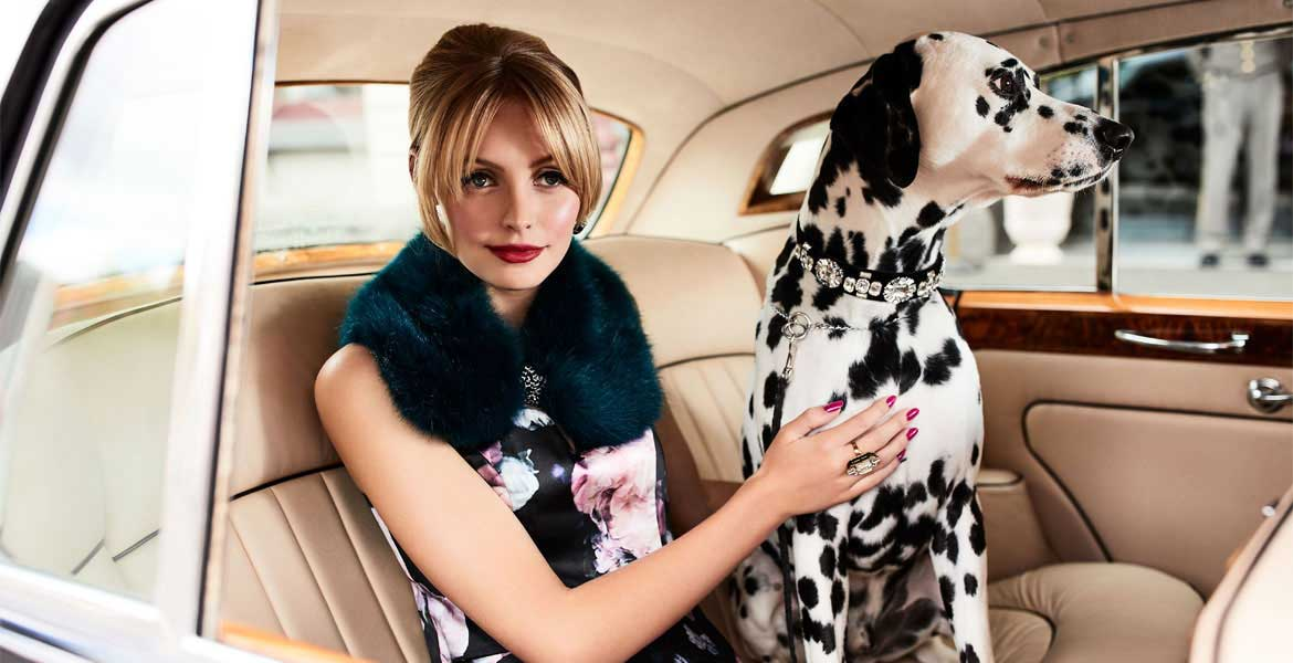 Modals Dalmatian fashion photo shoot 1