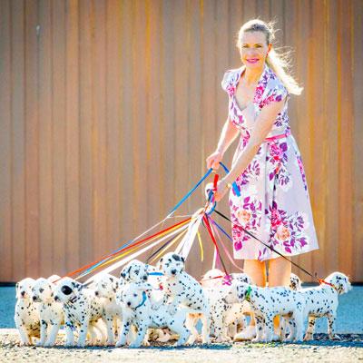 101 Dalmatian puppies