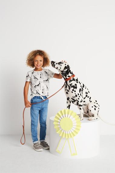 MoDals Dalmatian models